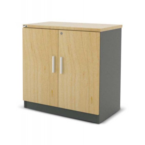 SWING DOOR CABINET (WK-MG-76-D1)